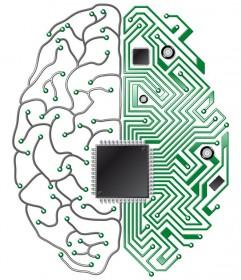 designinteligent