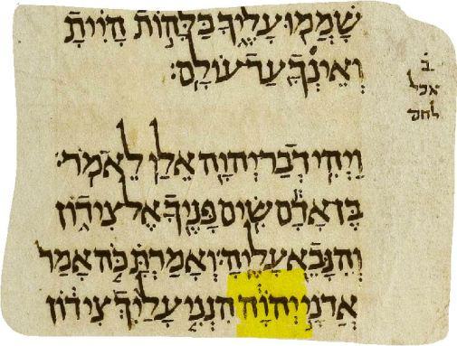 TORAH EMETH