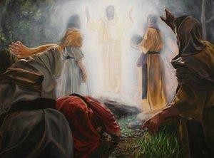 transfiguracaoTNM