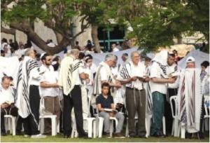 judeus anti Testemunhas de Jeová