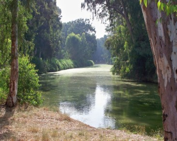 day1, Yarkon river.jpg.opt701x561o0,0s701x561